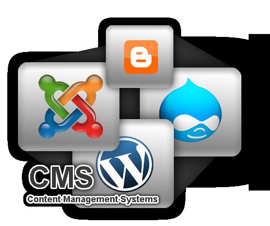 Izrada CMS web sajta? Internet sajtovi koje sami održavate?